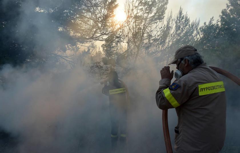 Φωτιά LIVE Κόλαση σε Βαρνάβα, Κάλαμο και Καπανδρίτι: Οι φλόγες καίνε ό,τι βρουν στο πέρασμά τους