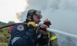 Δεν επιβεβαιώνει η Πυροσβεστική τις δηλώσεις υπουργών περί «οργανωμένους εμπρησμούς»