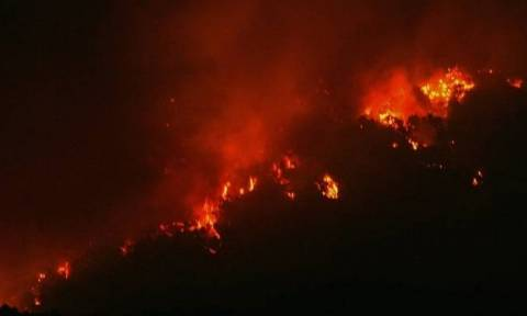 Φωτιά Τώρα: Στις φλόγες δασική έκταση στο Κούμπερι Ερυμάνθου