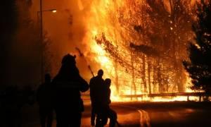 Φωτιά ΤΩΡΑ: Έτοιμη η Κύπρος να βοηθήσει την Ελλάδα στην κατάσβεση των πυρκαγιών