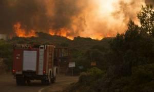 Φωτιά Τώρα: Ερπυστριοφόρα στέλνει η Περιφέρεια Αττικής - Γεύματα και νερό στους πυροσβέστες