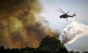 Φωτιά ΤΩΡΑ: Ανεξέλεγκτη η πυρκαγιά στην Ηλεία - Εκκενώνεται χωριό
