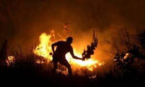 Φωτιά στην Αττική - Η πυρκαγιά απειλεί το Πολυδένδρι