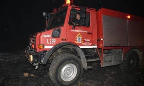 Σάμος: Εντοπίστηκε εμπρηστικός μηχανισμός κοντά σε δάσος