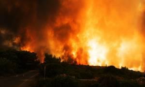 Φωτιά Ηλεία: Υπεράνθρωπες προσπάθειες να μείνει η πυρκαγιά μακριά από κατοικημένες περιοχές