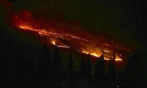 Φωτιά ΤΩΡΑ: Υπό μερικό έλεγχο η πυρκαγιά στο δήμο Μινώα Πεδιάδας Κρήτης