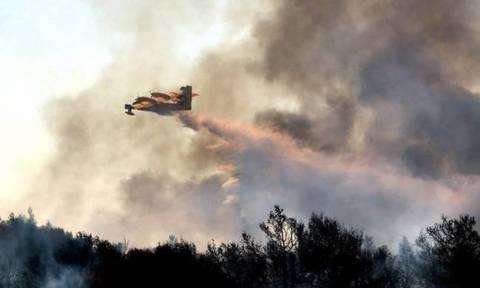 Πορτοκαλί συναγερμός! Ο χάρτης πρόβλεψης κινδύνου πυρκαγιάς για την Τετάρτη 16/8 (pics)