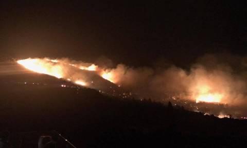 Φωτιά ΤΩΡΑ: Νύχτα-κόλαση στην Κεφαλονιά - Στις αυλές των σπιτιών η πυρκαγιά