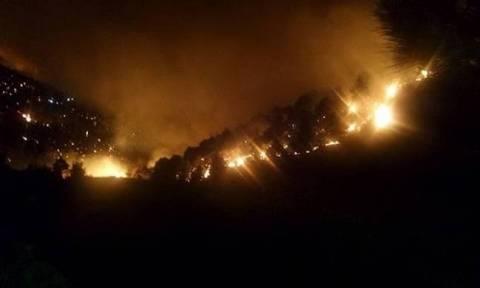 Φωτιά ΤΩΡΑ: Ανεξέλεγκτη η πυρκαγιά στο Ρατζακλί Κεφαλονιάς