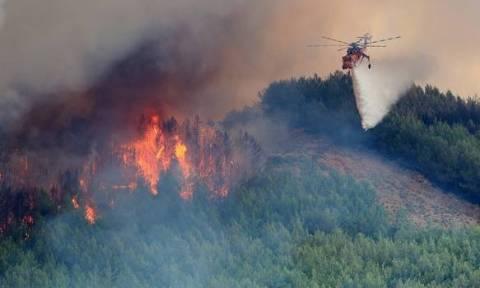 Φωτιά ΤΩΡΑ: Πυρκαγιά στην Πάργα – Κινδύνεψε πυροσβέστης στα Ιωάννινα