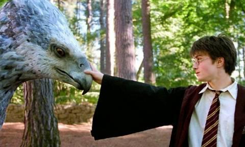 Μόνο για τους φανατικούς του Harry Potter! Έτσι μπορεί να έρθει ακόμη και στο... σπίτι σας!