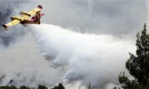 Φωτιές: Περισσότερες από 216 ώρες πτήσης συμπλήρωσαν τα πυροσβεστικά αεροσκάφη
