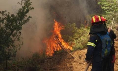 Φωτιά ΤΩΡΑ: Πού μαίνονται πυρκαγιές στην Ελλάδα