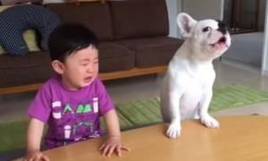 Σκύλος τρώει το φαγητό του μωρού και στο τέλος κλαίει μαζί του (Vid)