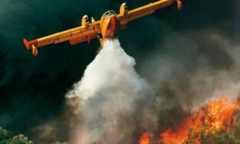 Μεγάλη φωτιά στο Μαρκόπουλο Αττικής