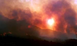 Υπό έλεγχο οι φωτιές σε Ζάκυνθο και Ηλεία