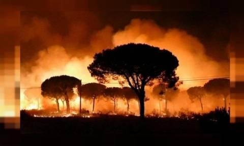 Καταστροφικές πυρκαγιές έπληξαν φέτος την Ισπανία - Ήταν οι μεγαλύτερες της τελευταίας 5ετίας!