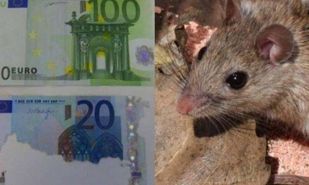 Κρήτη: Πέθανε και βρήκαν στο σπίτι της 30.000 ευρώ φαγωμένα από ποντίκια!