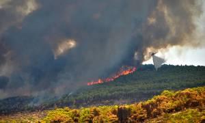 Καίγεται ξανά η Ζάκυνθος: Εκκενώνονται χωριά - Τρέχουν να σωθούν οι κάτοικοι (pics+vid)