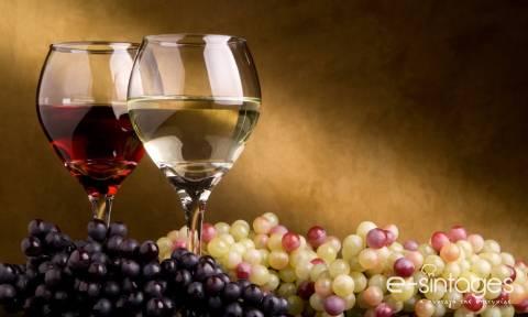 Αποστόλου: Καταργείται ο ειδικός φόρος κατανάλωσης στο κρασί