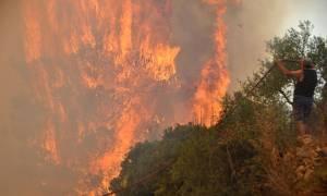 Φωτιά Ζάκυνθος: Μαίνεται η πυρκαγιά στο βορειοδυτικό τμήμα του νησιού