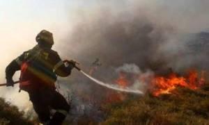 Φωτιά ΤΩΡΑ στην Κρήτη: Κοντά σε μοναστήρι οι φλόγες