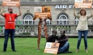 Μια «τίγρη» και δυο «πίθηκοι» διαδήλωσαν έξω από τα γραφεία της Air France!