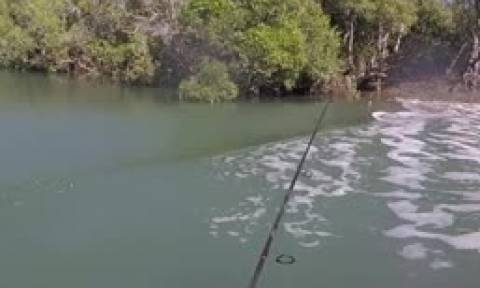 Ψάρευε... αμέριμνος όταν ξαφνικά είδε δίπλα του να συμβαίνει κάτι τρομερό (video)