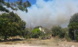Φωτιά Ρόδος: Υπό μερικό έλεγχο η πυρκαγιά στο λόφο Αγίου Στεφάνου (pics)