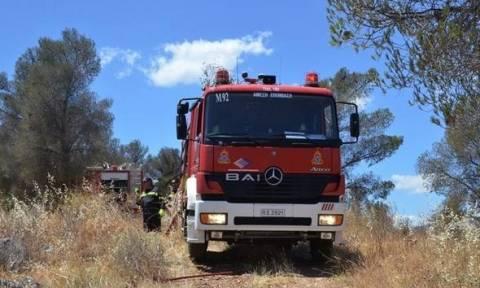 Ηλεία: Συνελήφθησαν δύο αδέλφια για την πυρκαγιά στο Γεράκι