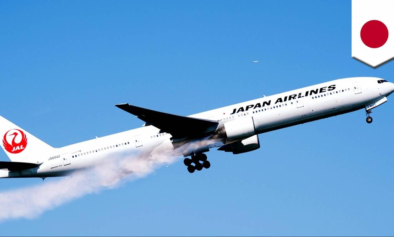 ιαπωνικό αεροπλάνο σεξ μεγάλο πουλί ταλαντεύεται