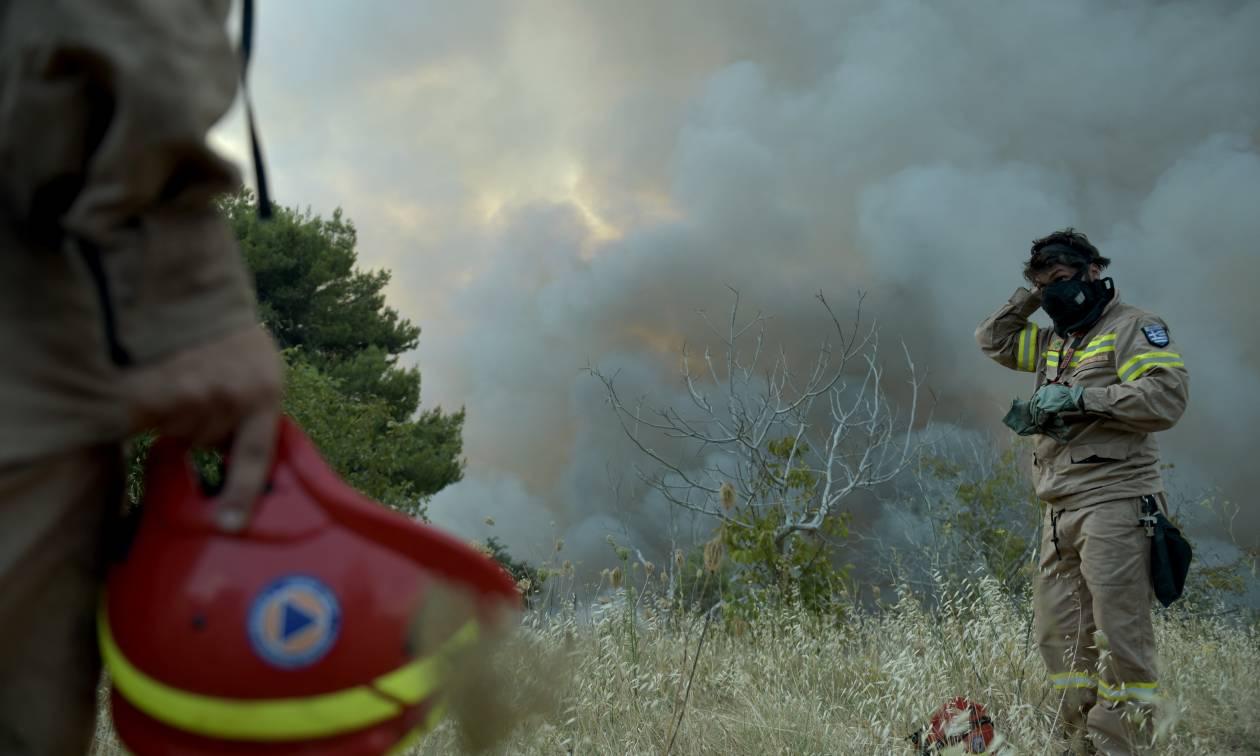 Φωτιά ΤΩΡΑ στα Καλάβρυτα
