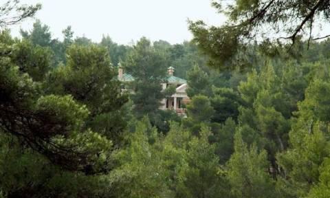 Δασικοί Χάρτες - Προσοχή: Έως τις 25 Σεπτεμβρίου η διορία για την υποβολή αντιρρήσεων