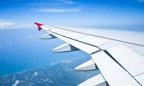 Αυτή είναι η πιο χαριτωμένη «αεροσυνοδός» που έχετε δει ποτέ (vid)