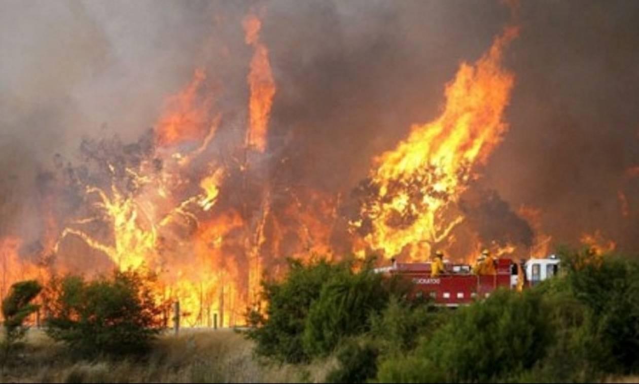 Πύρινη κόλαση στην Πελοπόννησο: Απειλούνται οικισμοί σε Αχαΐα και Ηλεία