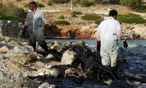 «Κρανίου Τόπος» ο Σαρωνικός: Ξεβράζει δηλητήριο η θάλασσα στη Σαλαμίνα - Ανατριχιαστικές εικόνες