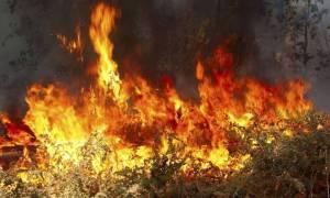 Φωτιά ΤΩΡΑ: Σε εξέλιξη πυρκαγιά στις Βολιώνες Ρεθύμνου