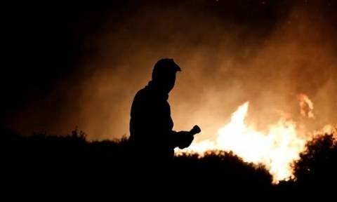 Φωτιά ΤΩΡΑ - Ηλεία: Έσβησε το μέτωπο στη Νέα Μανωλάδα - Υπό μερικό έλεγχο στην Αρετή (pic)