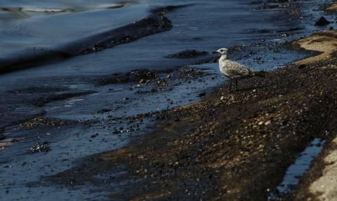 «Μαύρη» θάλασσα ο Σαρωνικός - Μυστήριο παραμένει η βύθιση του δεξαμενόπλοιου