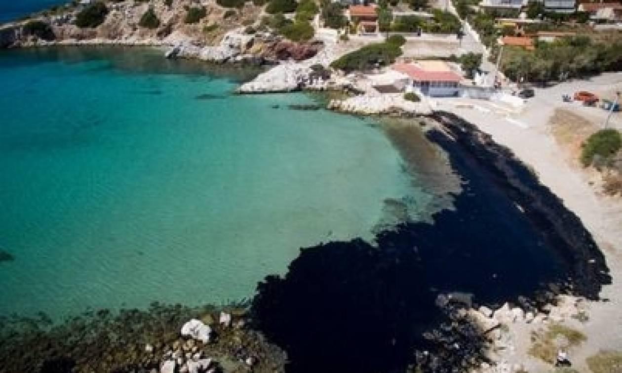 На восстановление и очистку афинских пляжей от мазута уйдет 10 лет
