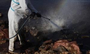 Πετρελαιοκηλίδα - ΚΕΕΛΠΝΟ: Αποφύγετε την κολύμβηση στις παραλίες με ρύπανση