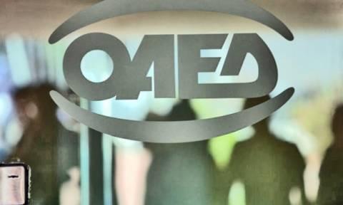 ΟΑΕΔ - Εποχικό επίδομα: Ποιοι το δικαιούνται – Πότε ξεκινούν οι αιτήσεις