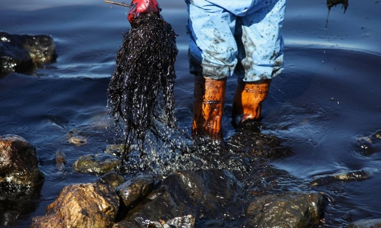 Πετρελαιοκηλίδα στην Αττική: Η καταστροφή συνεχίζεται εν μέσω πολιτικής αντιπαράθεσης