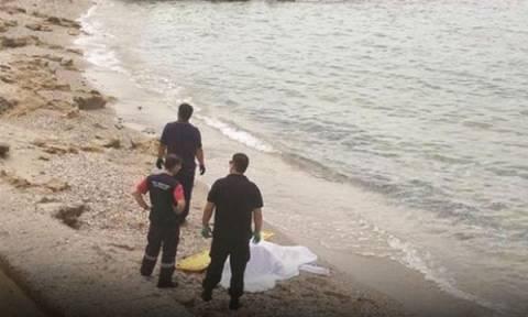 Τραγωδία με ηλικιωμένο στη Χαλκιδική