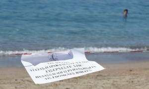 Απίστευτο! Κάνουν μπάνιο στη θάλασσα παρά την απαγόρευση της κολύμβησης στον Σαρωνικό (pics & vid)