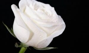 Θλίψη: Πέθανε ο Τάκης Συμεωνίδης