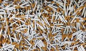 Πάτρα: «Μπλόκο» σε μεγάλη ποσότητα λαθραίων τσιγάρων – Τα είχαν κρύψει σε παλέτες με γιαούρτια