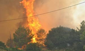 Φωτιά: Μεγάλη πυρκαγιά μαίνεται στην Αρχαία Ολυμπία