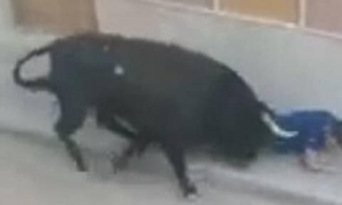Βίντεο σοκ: Ταύρος καρφώνει με μανία 46χρονο στη Βαλένθια