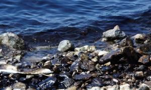 Πετρελαιοκηλίδα: Η εικόνα που παρουσιάζουν οι ακτές της Αττικής - Πού υπάρχει πρόβλημα